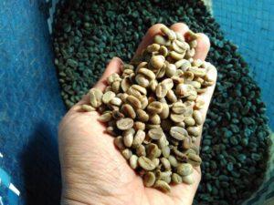 kopi indonesia enak beragam berbudaya 234